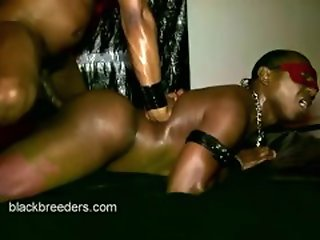Anal , Doggy , Ebony , Top Rated